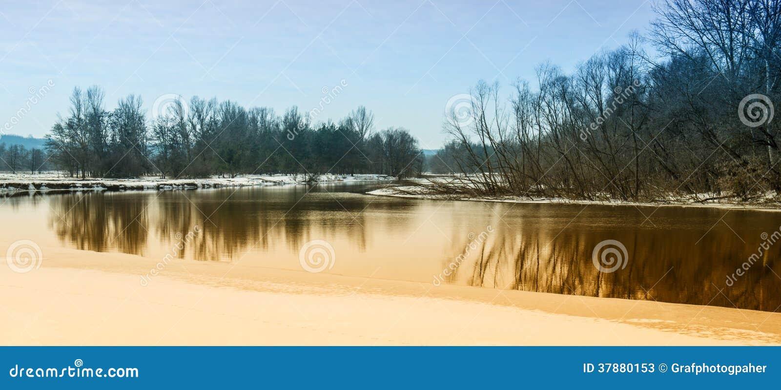 Bos en rivier