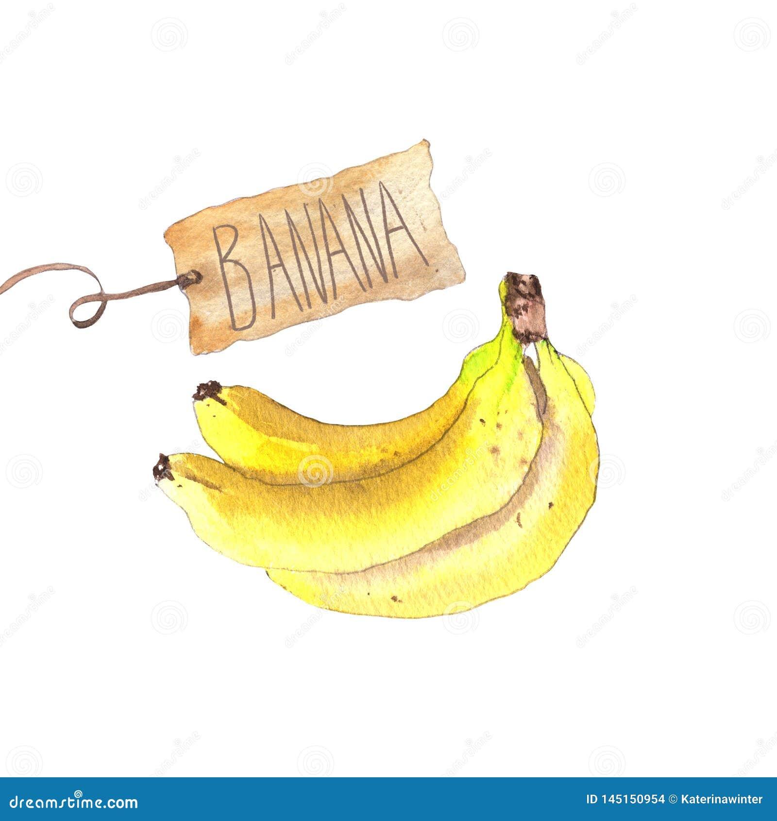 Bos van bananen met ambachtdocument markering
