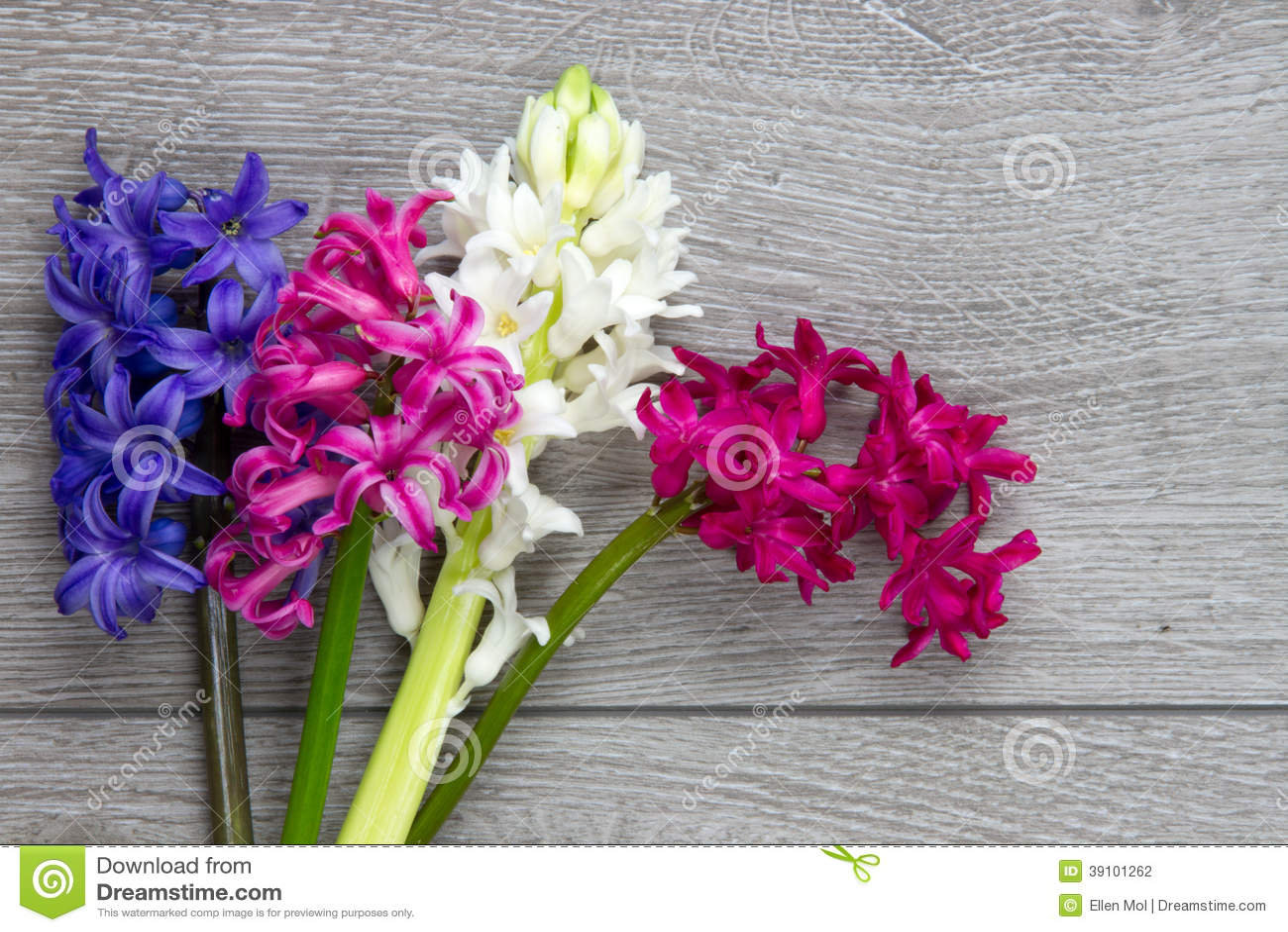 Bos van hyacintbloemen