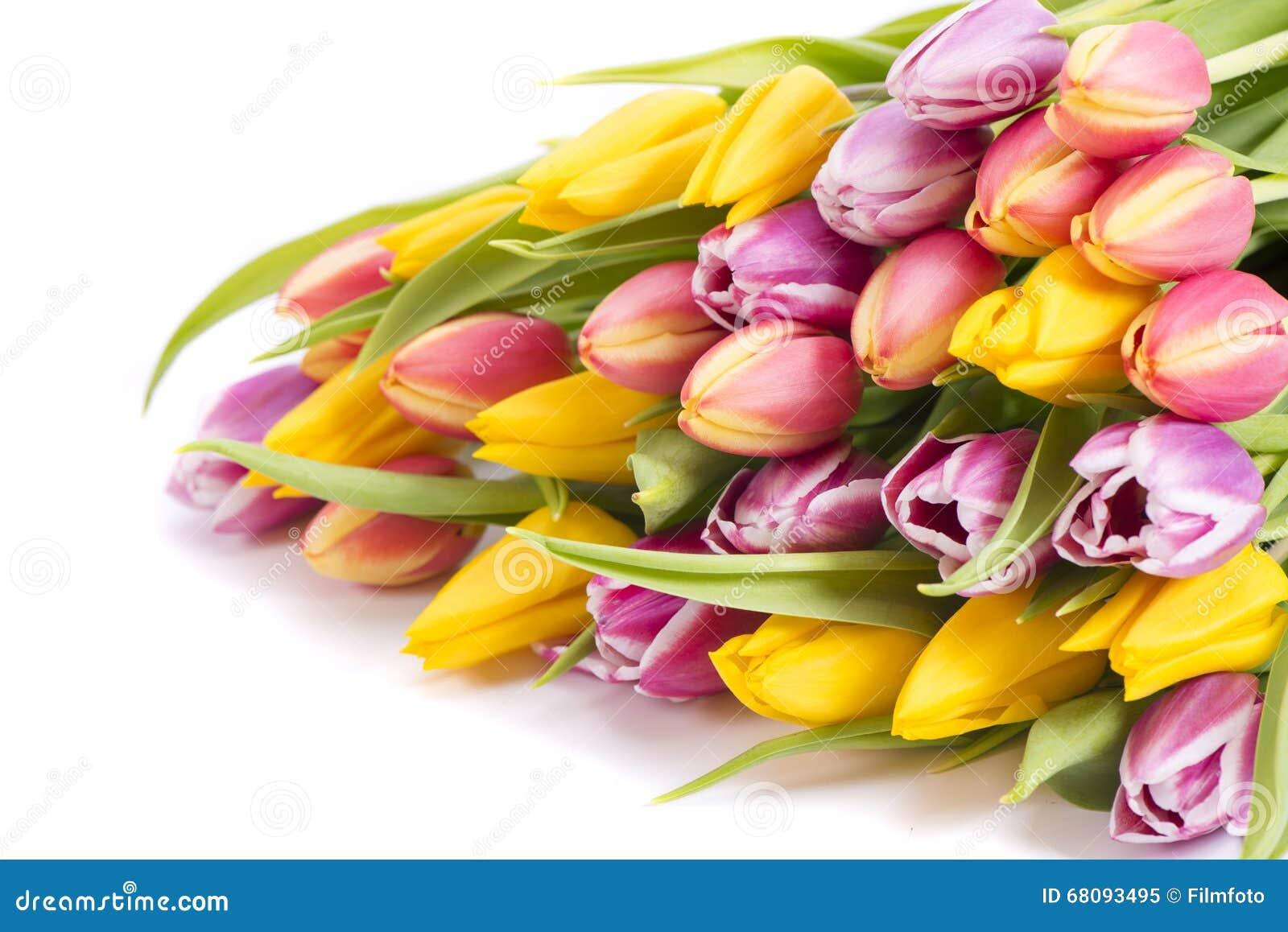 Afbeeldingen Bossen Bloemen