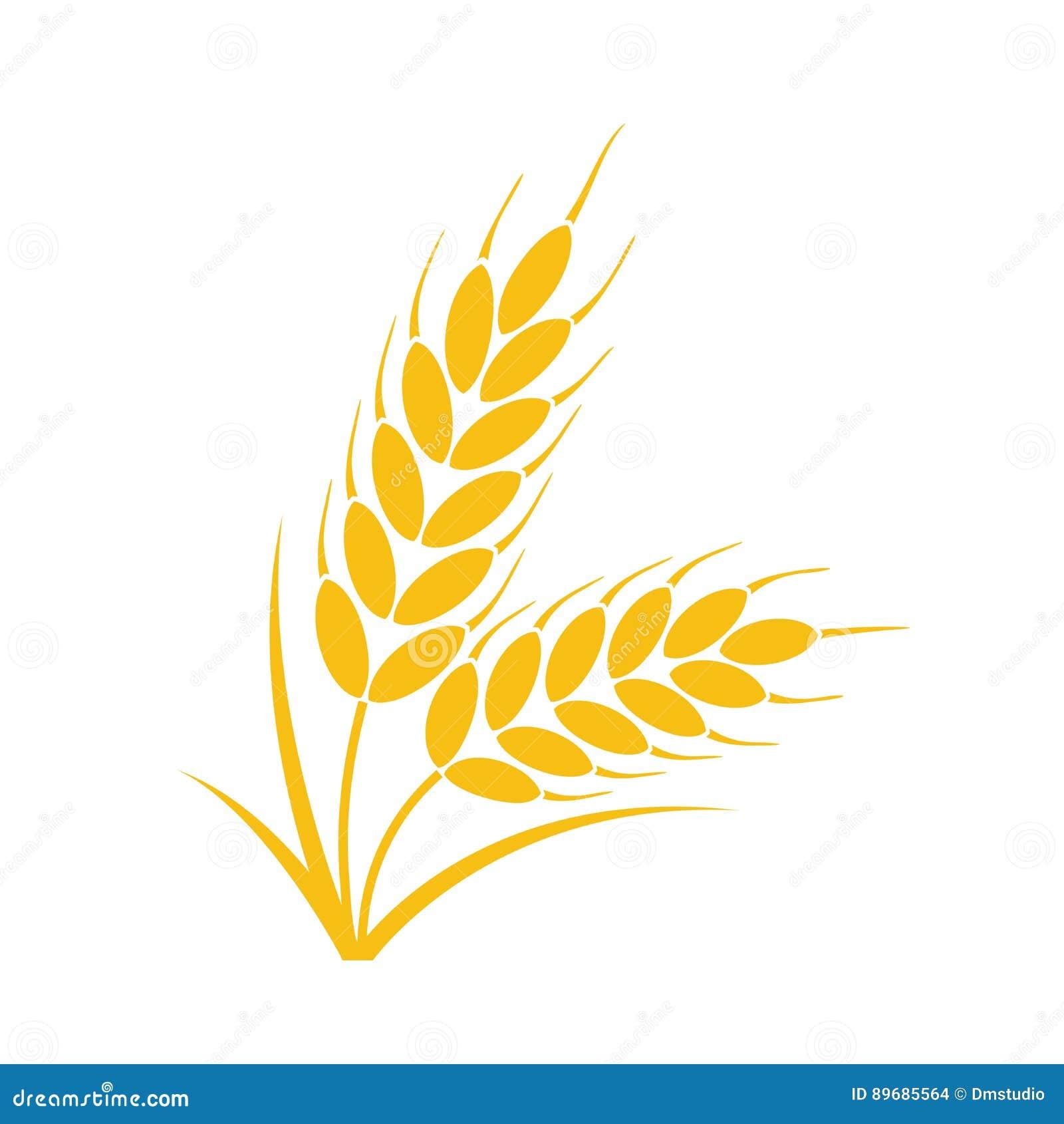 Bos van tarwe of roggeoren met gehele korrel