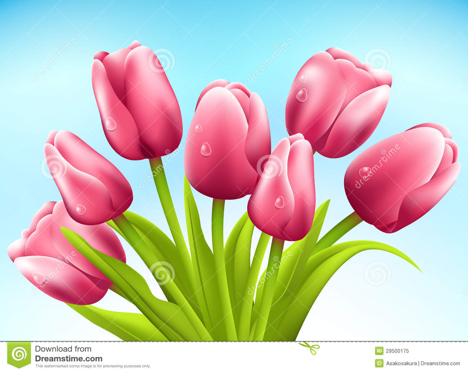 Bos van tulpen op witte achtergrond. Vector