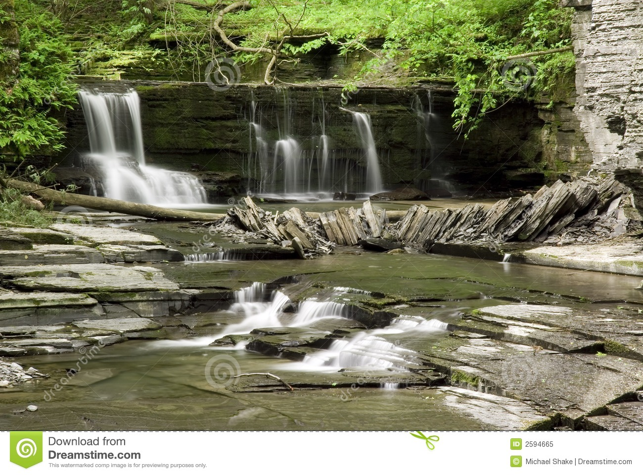 Bos Waterval