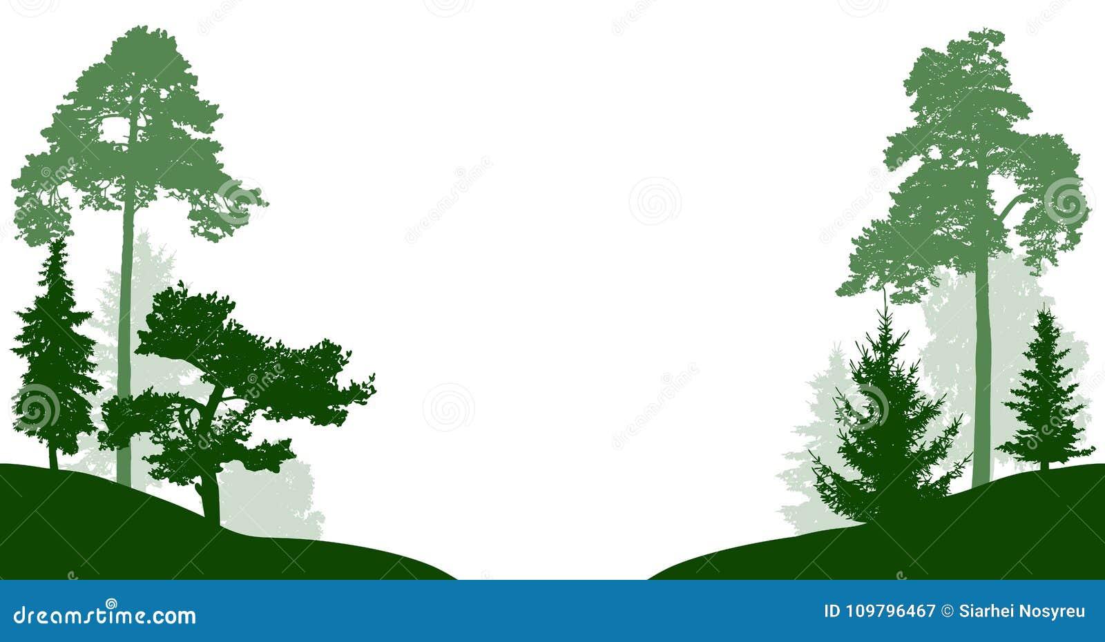 Bosbomen geplaatst vectorsilhouet Hout op witte achtergrond wordt geïsoleerd die Bomen in de parkpas door de weg of de rivier