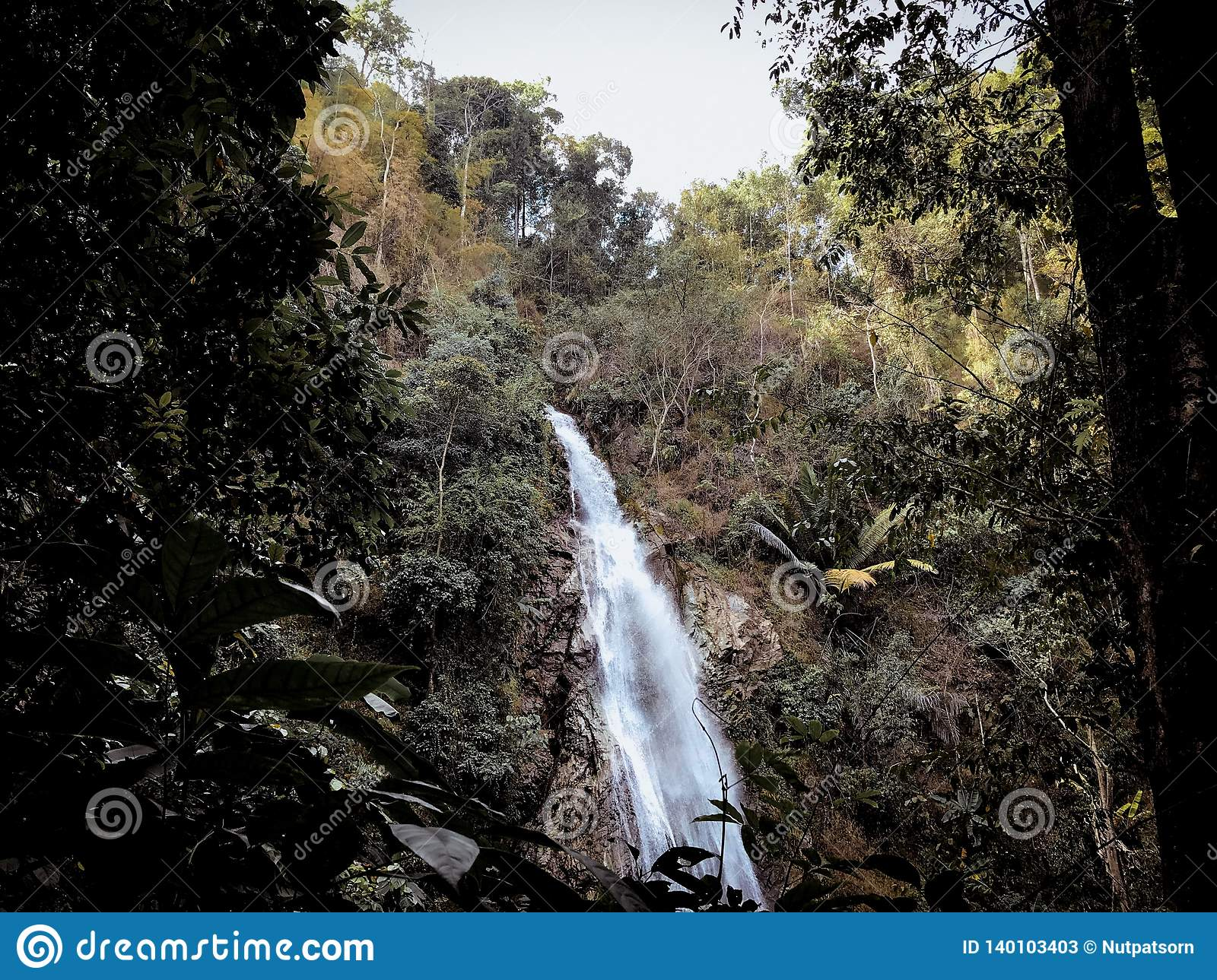 Bosparkwaterval