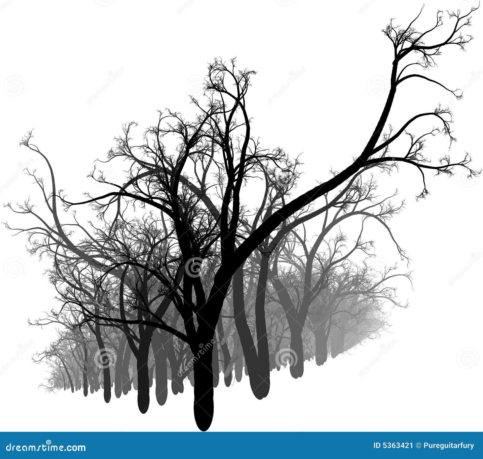 Bosque blanco y negro imagen de archivo imagen 5363421 - Blanco y negro paint ...