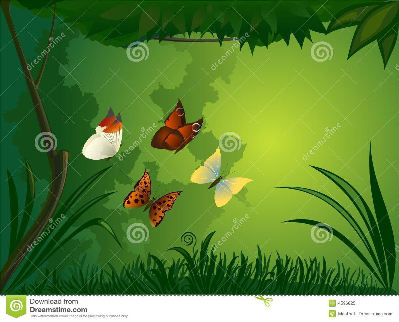 Bosque con la mariposa