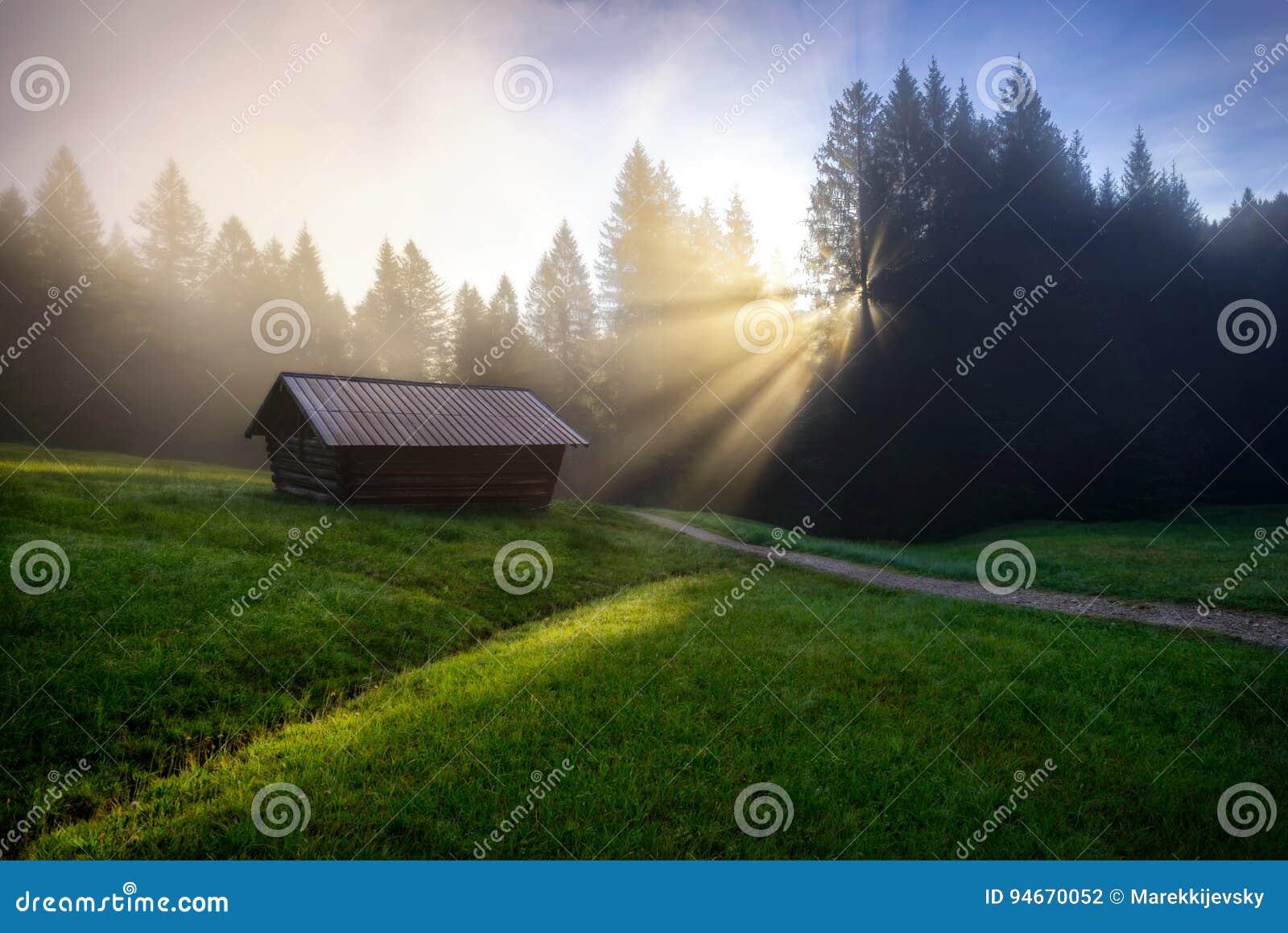 Bosque de Geroldsee durante día de verano con salida del sol de niebla sobre los árboles, montañas bávaras, Baviera, Alemania