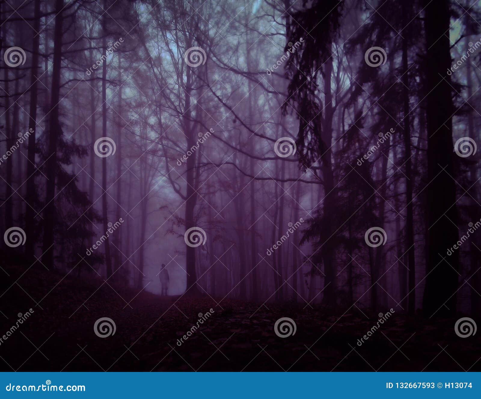 Bosque de niebla espeluznante oscuro