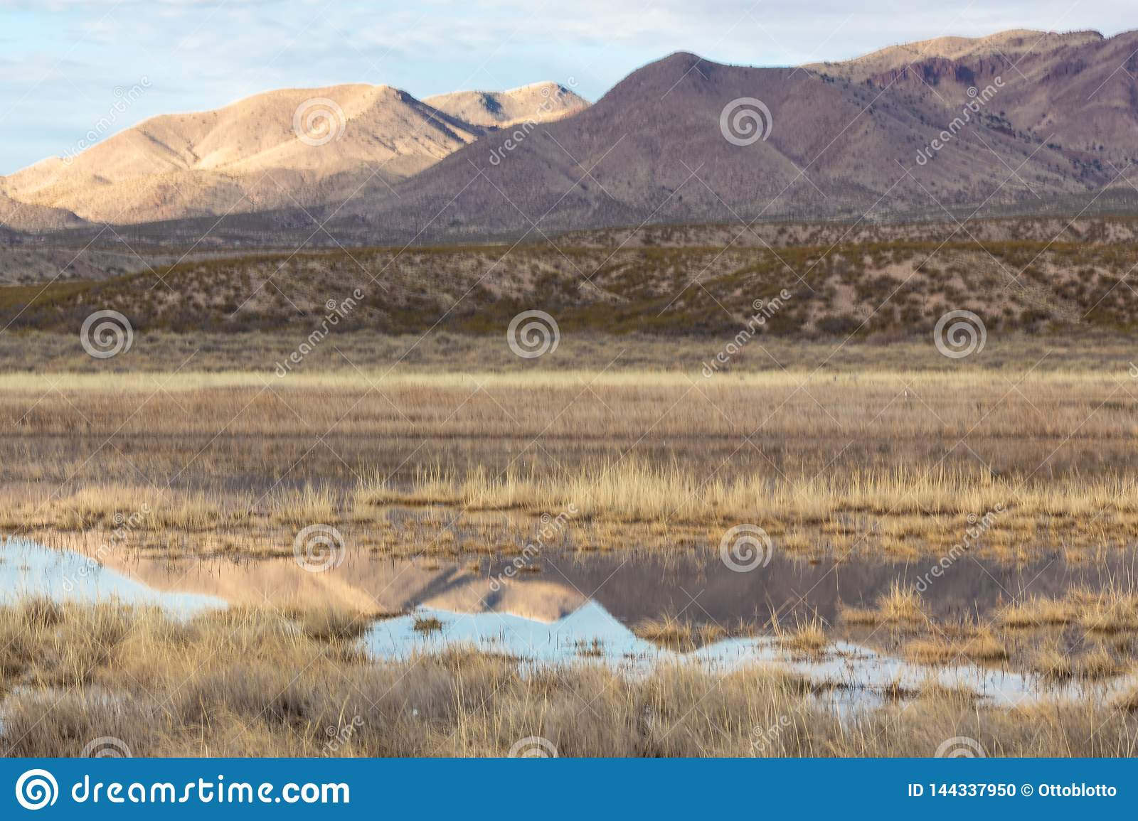 Bosque del Apache view of New Mexico mountains and reflections in winter landscape