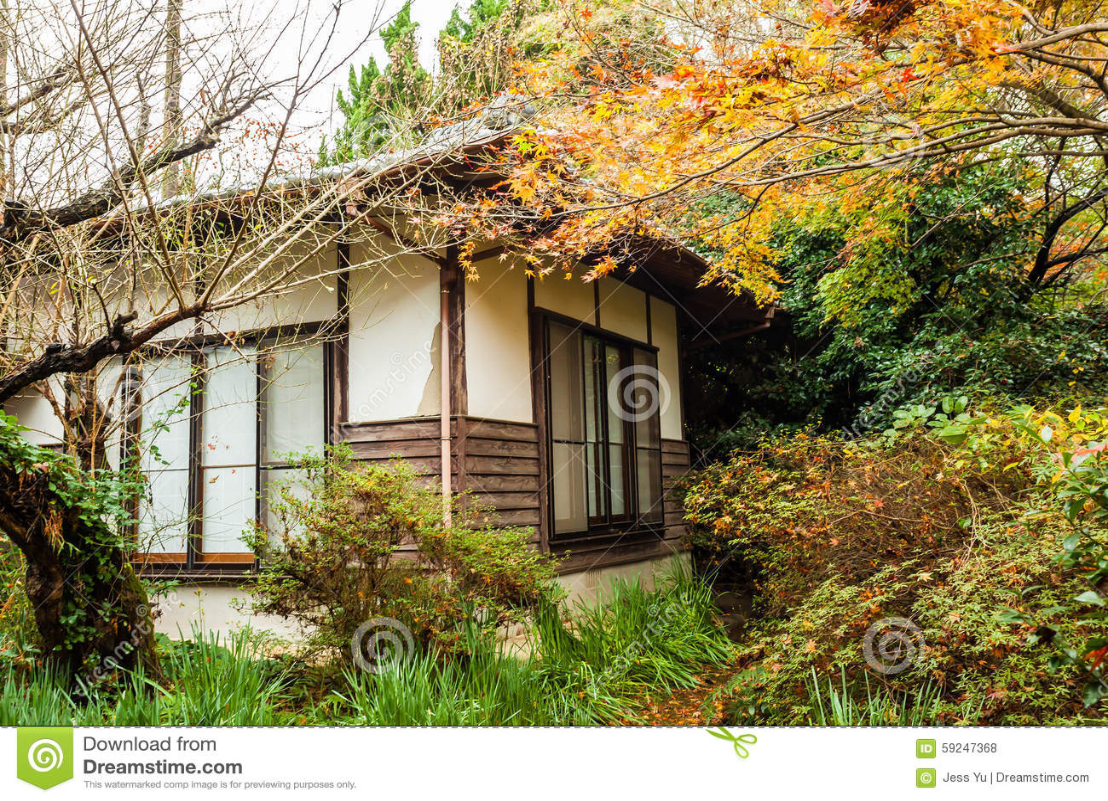 Bosque del otoño en Japón con las casas