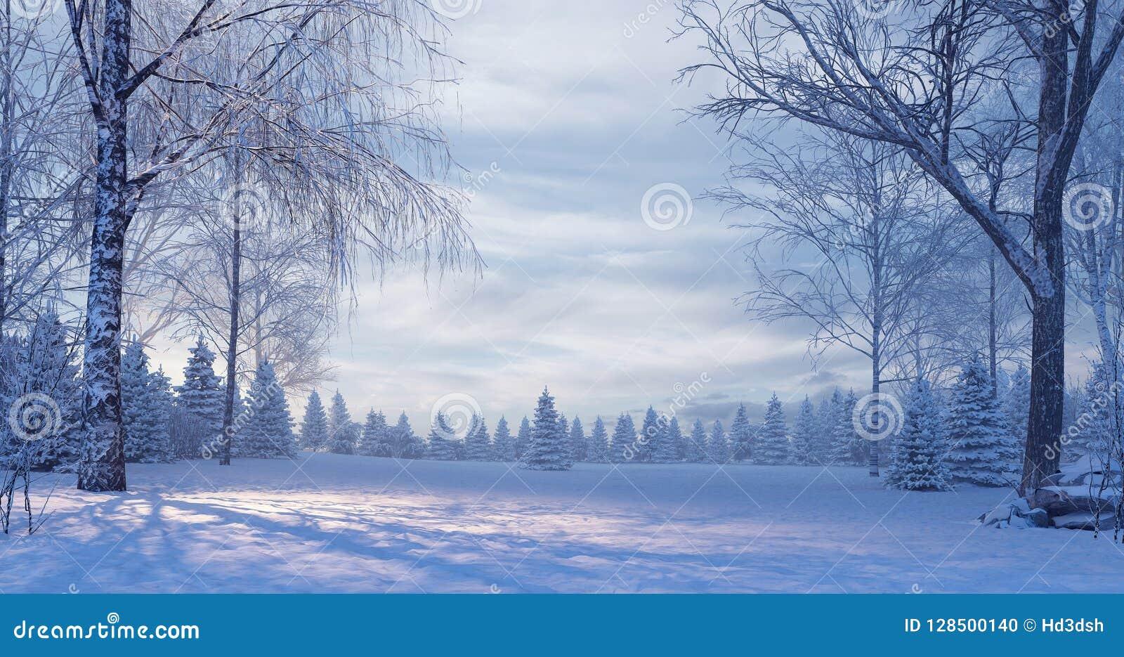 Bosque del pino en la noche de niebla del invierno
