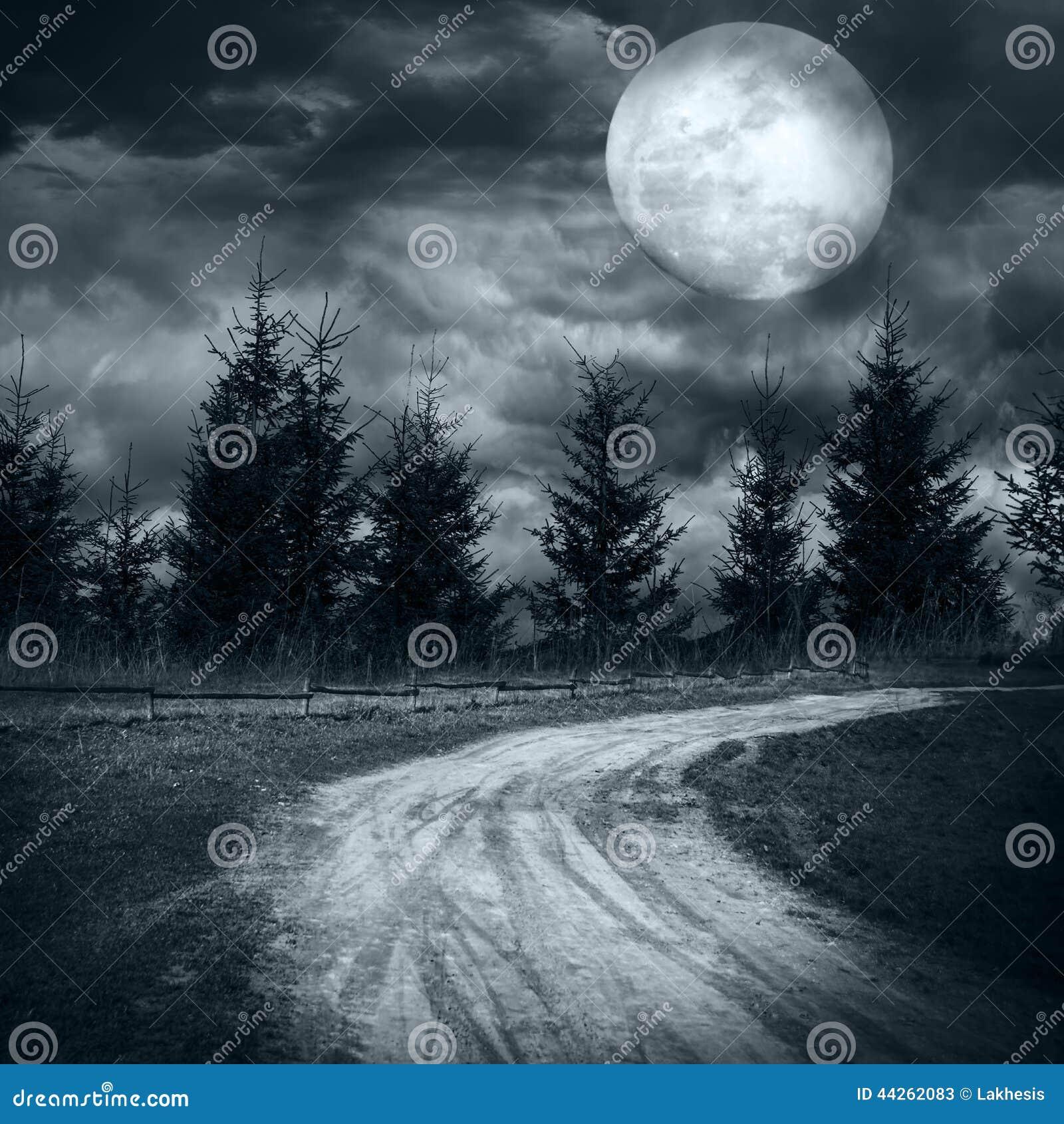 Bosque misterioso debajo del cielo nublado dramático en la noche de la Luna Llena