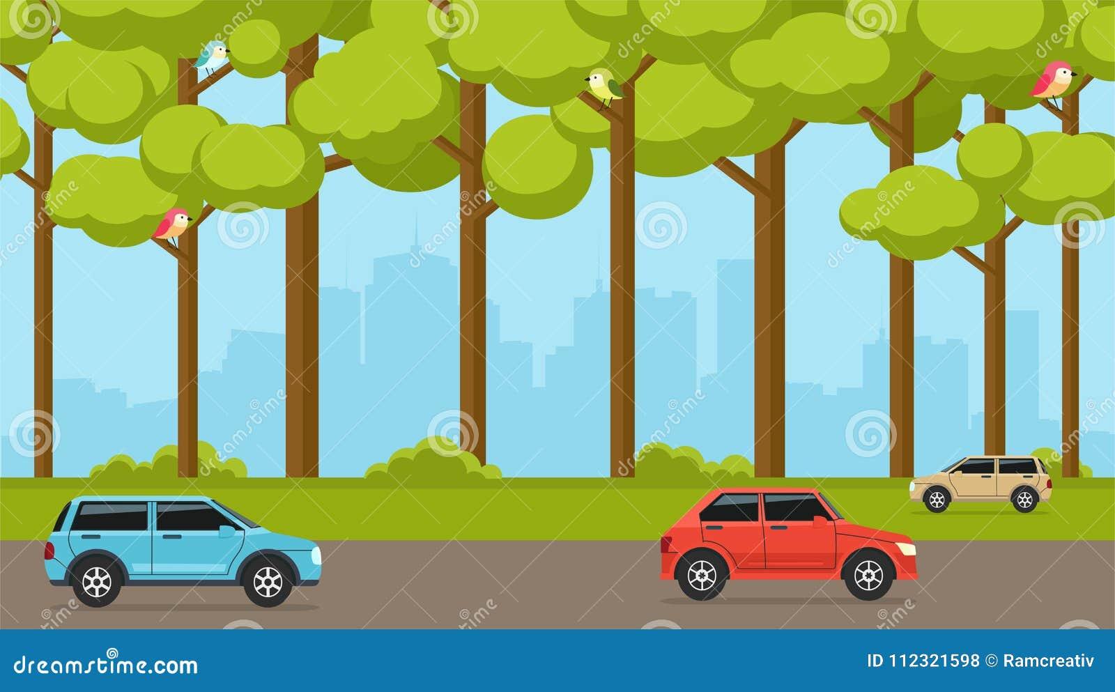 Bosque suburbano en el fondo de la ciudad con los coches Calle con los coches