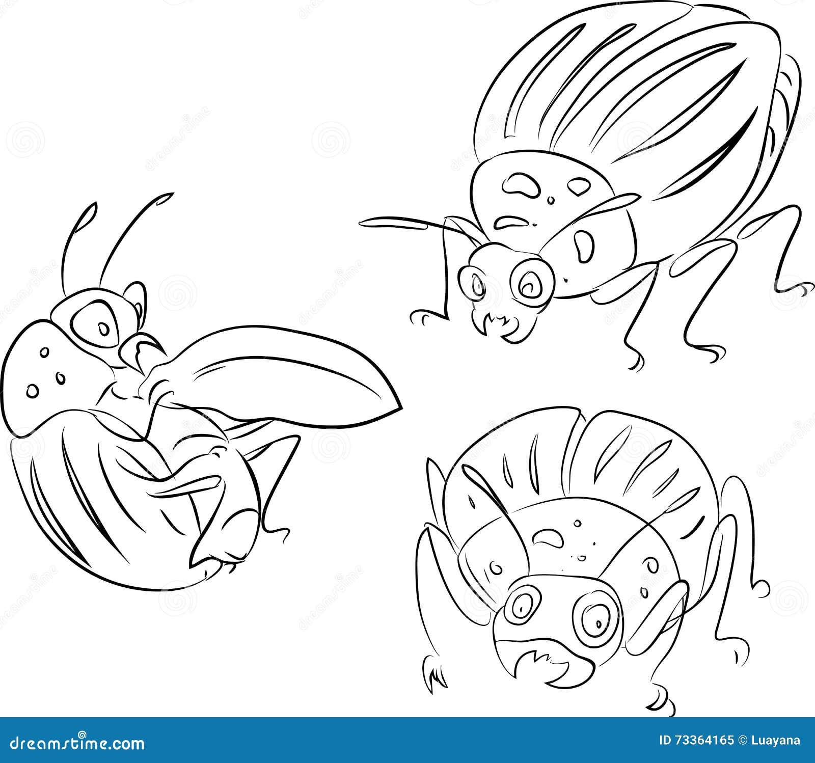 Bosquejo Del Escarabajo De Patata De Colorado Ilustración del Vector ...