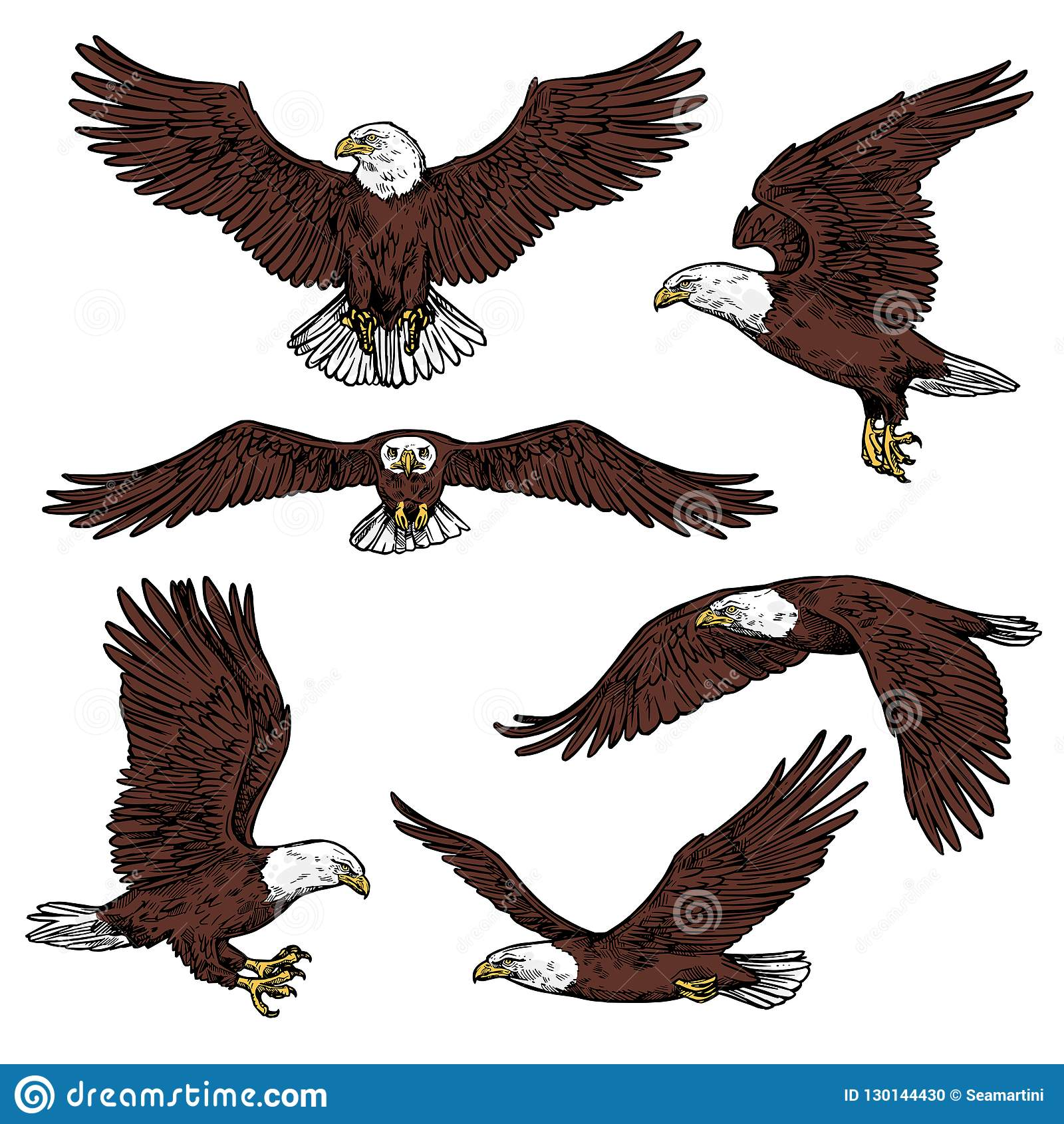 Harrier ilustraciones stock vectores y clipart 405 ilustraciones stock