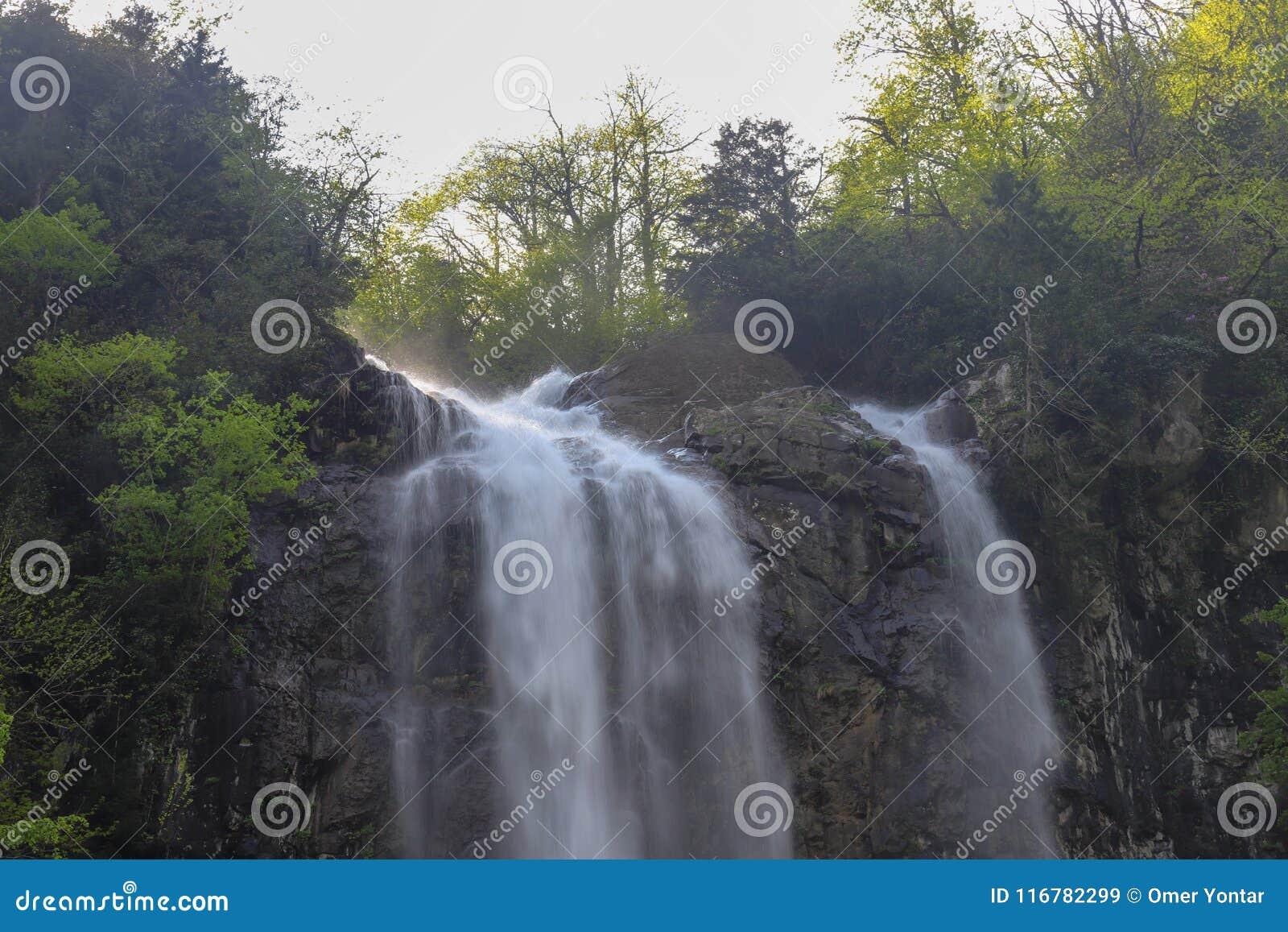 Bosques, cascadas y corrientes a relajarse