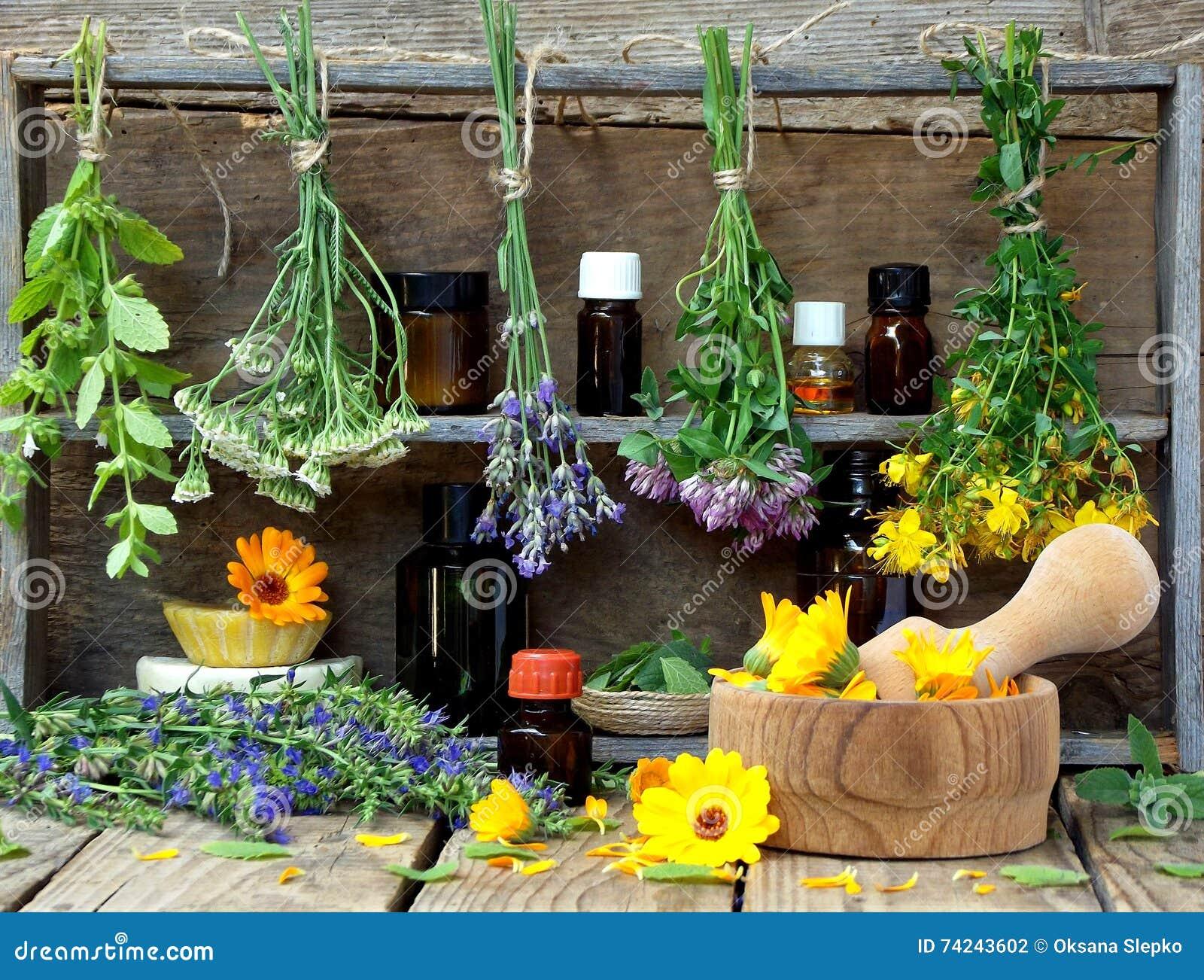 Bossen van het helen van kruiden - munt, duizendblad, lavendel, klaver, hyssop, duizendblad, mortier met bloemen van calendula en