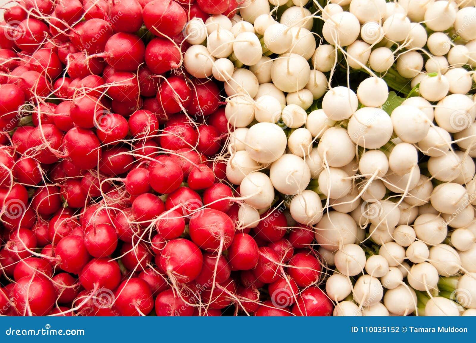 Bossen van rode en witte radijzen bij een landbouwersmarkt