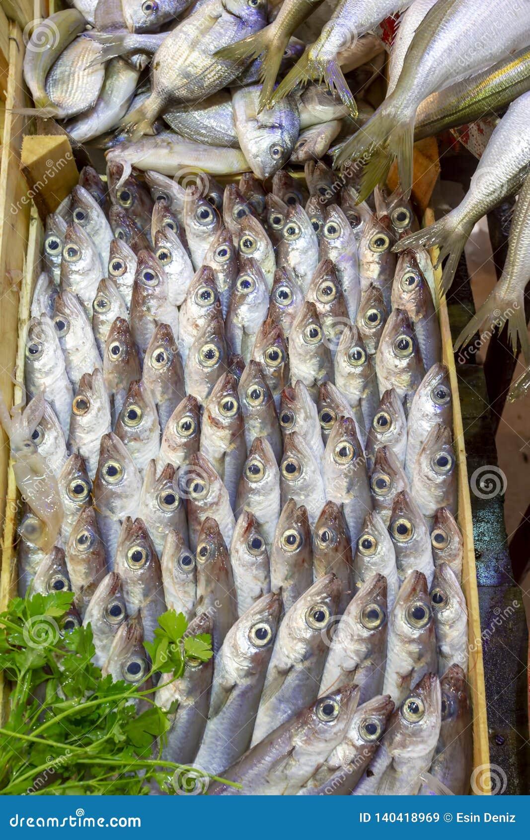 Bostanli / Izmir / Turkey, February 20, 2019, Bostanli fish market bazaar Bospa