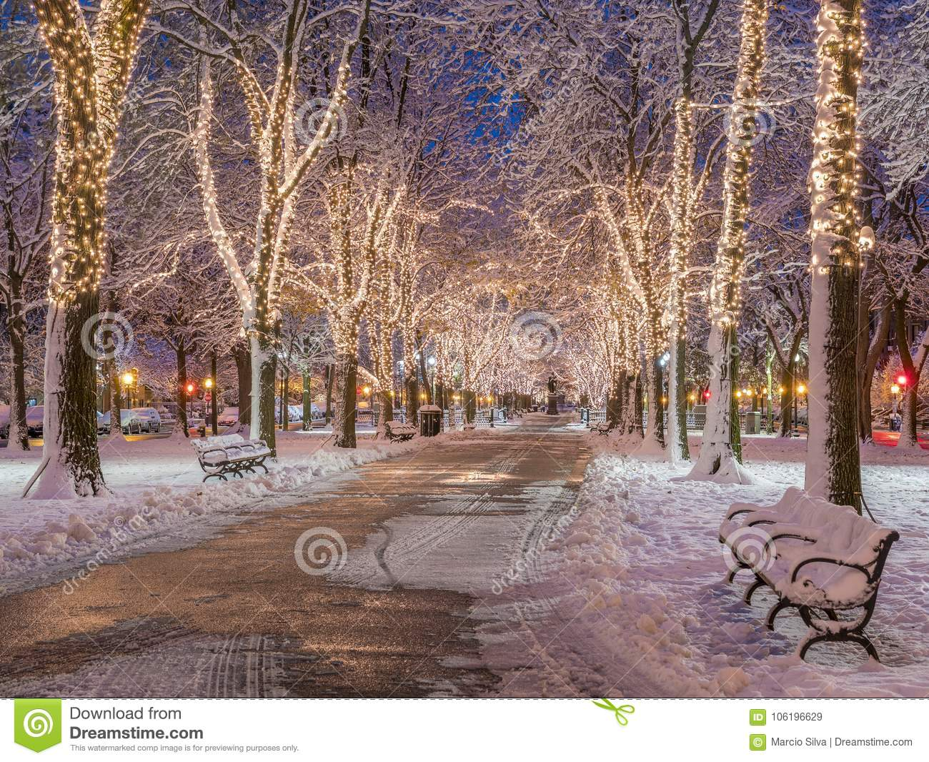 Boston Christmas Lights.Boston Christmas Lights Stock Image Image Of Christmas