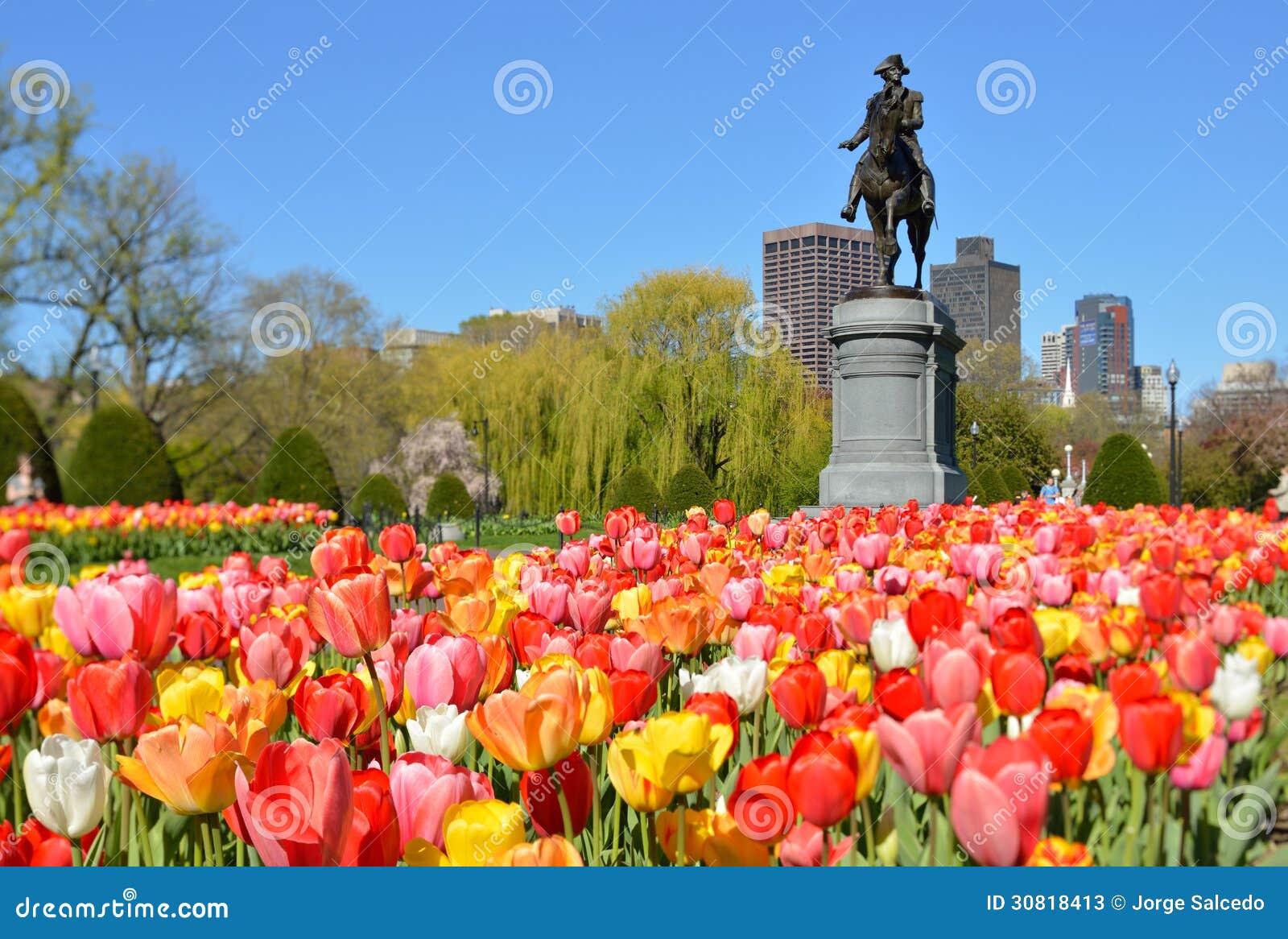 Boston offentlig trädgård