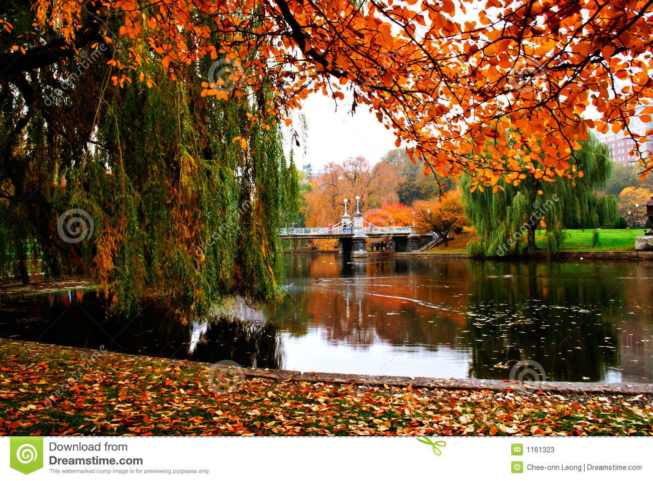 Boston Public Garden stock image. Image of picnic, fall - 1161323