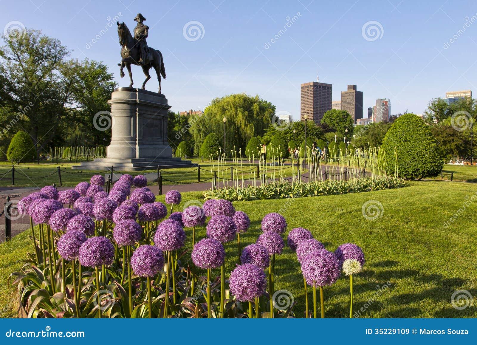 Boston Public Garden Stock Image Image Of Nature
