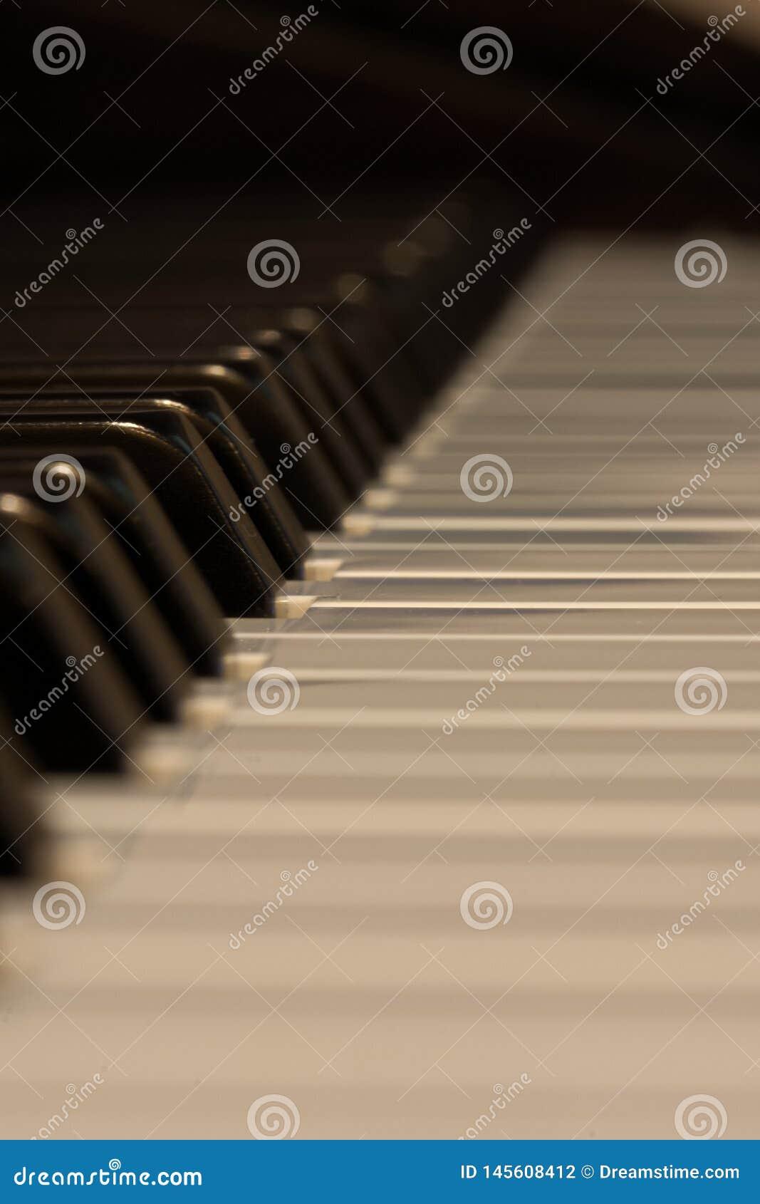 Botões do piano brancos e pretos