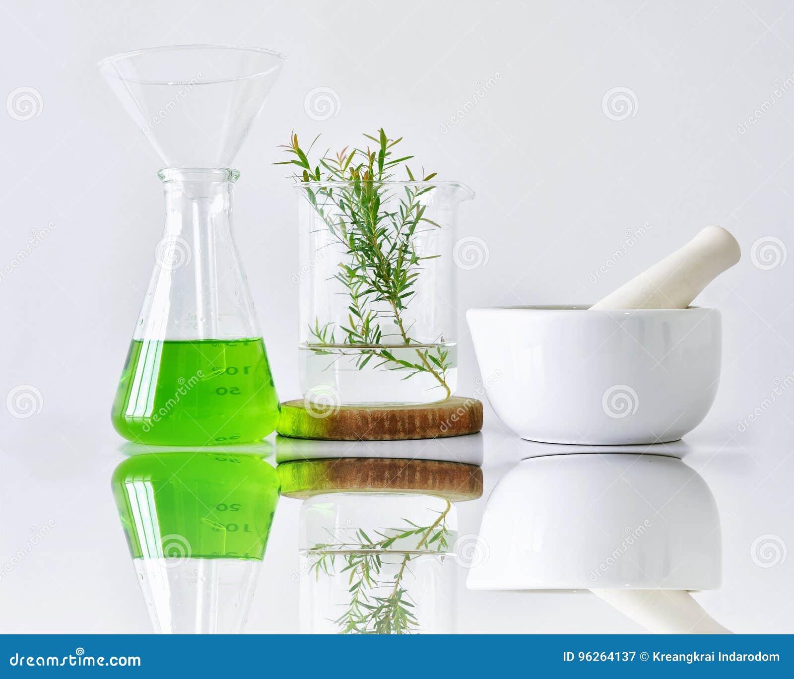 Botanica organica naturale e cristalleria scientifica, medicina alternativa dell erba, prodotti di bellezza naturali di cura di p