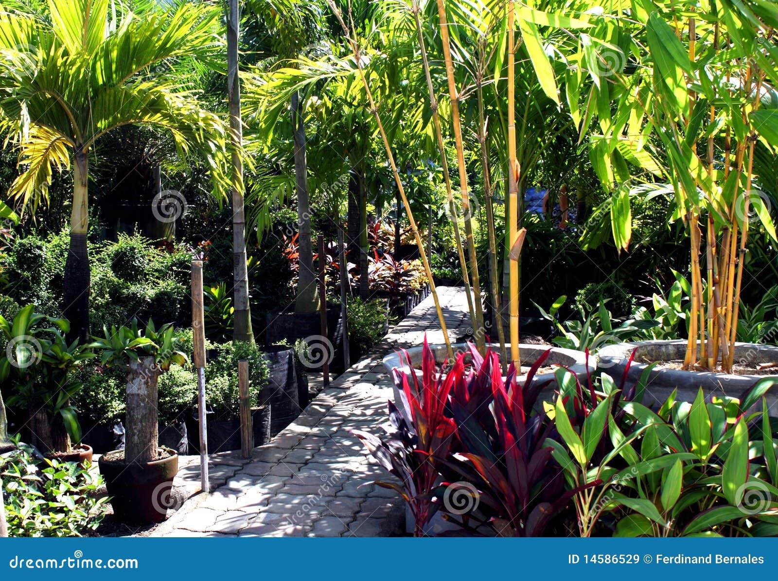 Botanical Garden Royalty Free Stock Images Image 14586529
