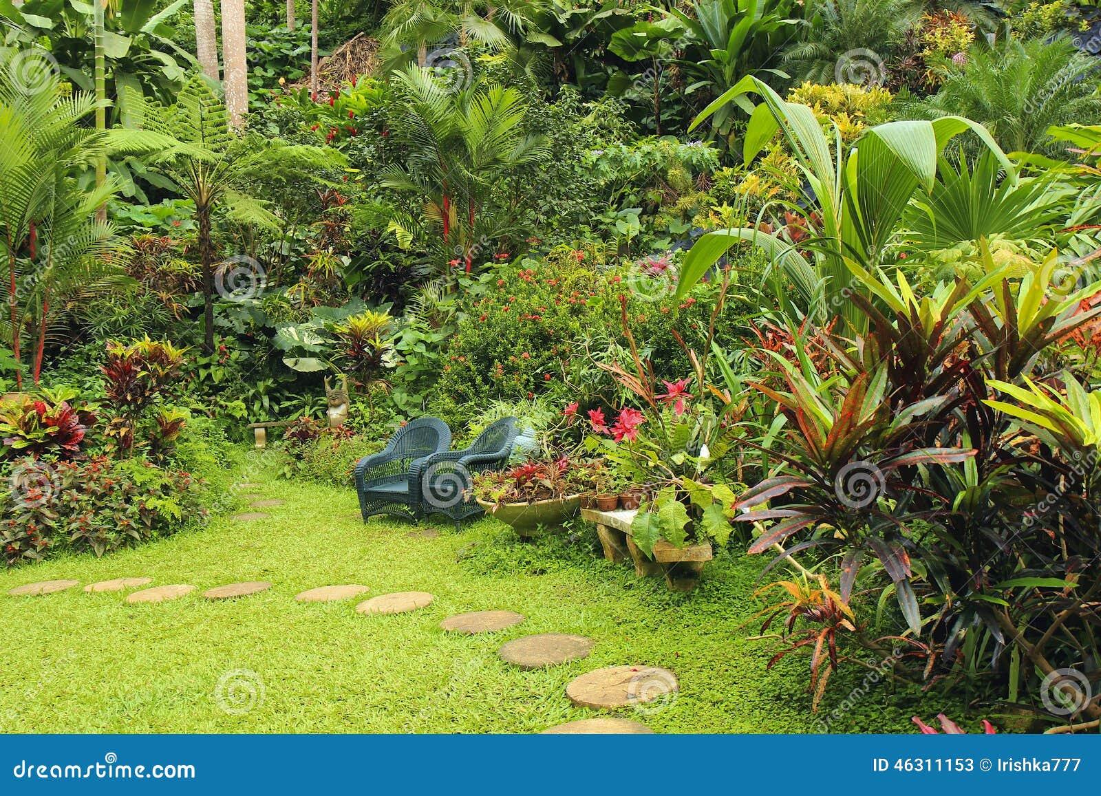 botanical garden in barbados caribbean stock image image of flowers paradise 46311153. Black Bedroom Furniture Sets. Home Design Ideas
