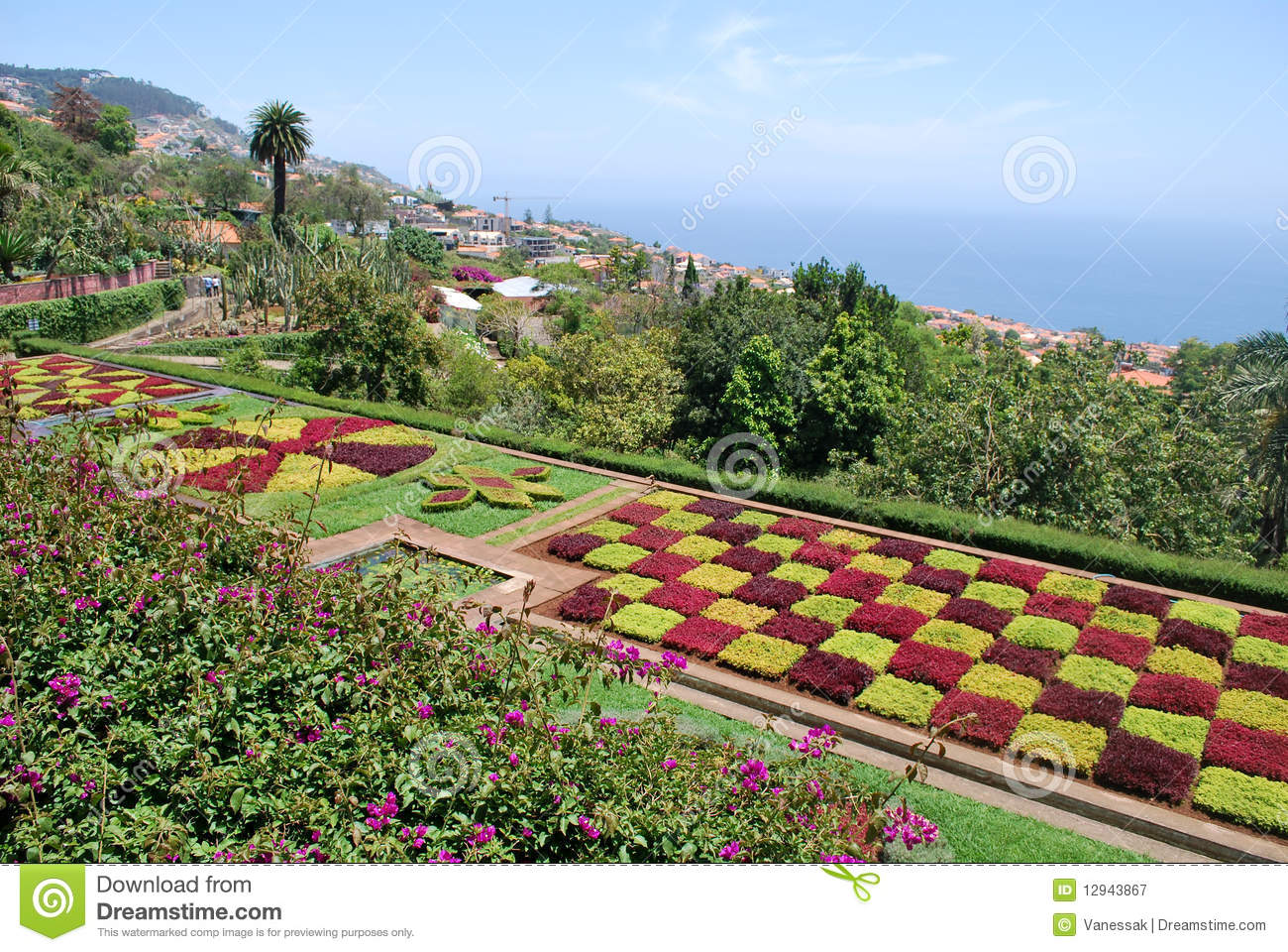 Botanical garden of funchal in madeira royalty free stock for Botanical garden timing