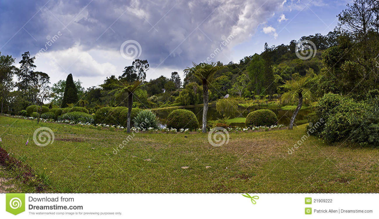 Botanical garden vumba zimbabwe stock photography for Garden design ideas in zimbabwe