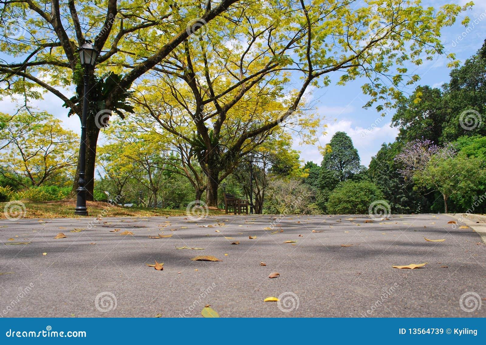 Botanical Gardens Royalty Free Stock Images Image 13564739