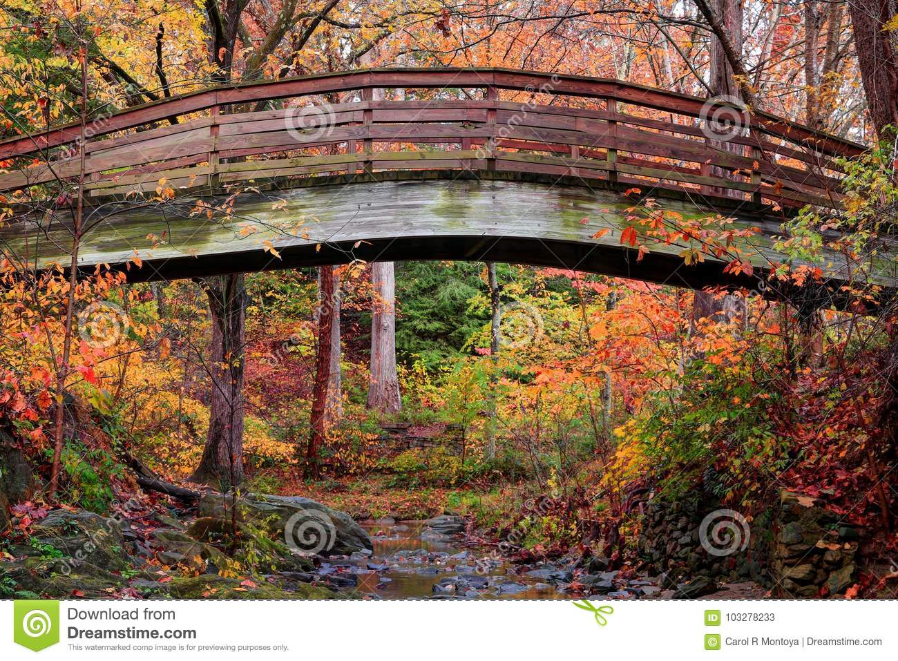 Botanical Gardens Arched Bridge Asheville During Fall Stock Image ...