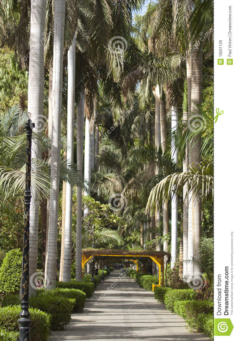 Botanical Gardens At Aswan In Egypt Stock Image - Image of plants ...