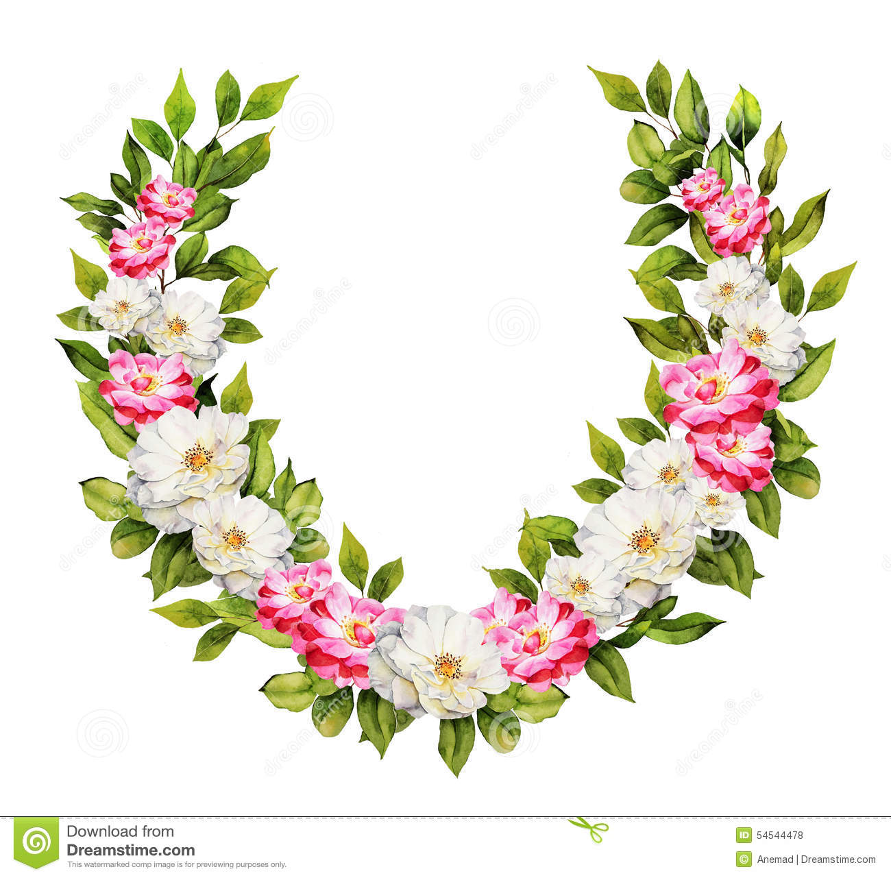 Botanical Watercolor Roses Wreath Composition Stock