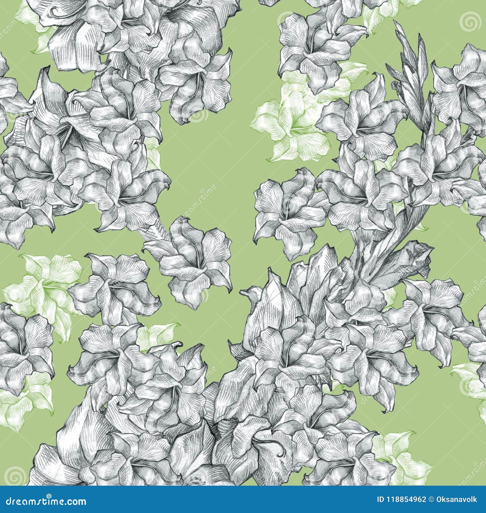 Botanisch bloemenbloempotlood die naadloze overladen patroontextuur trekken op kalme groen voor uitnodigingen of aankondigingen
