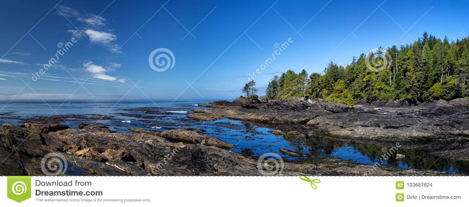 Botanisch strand