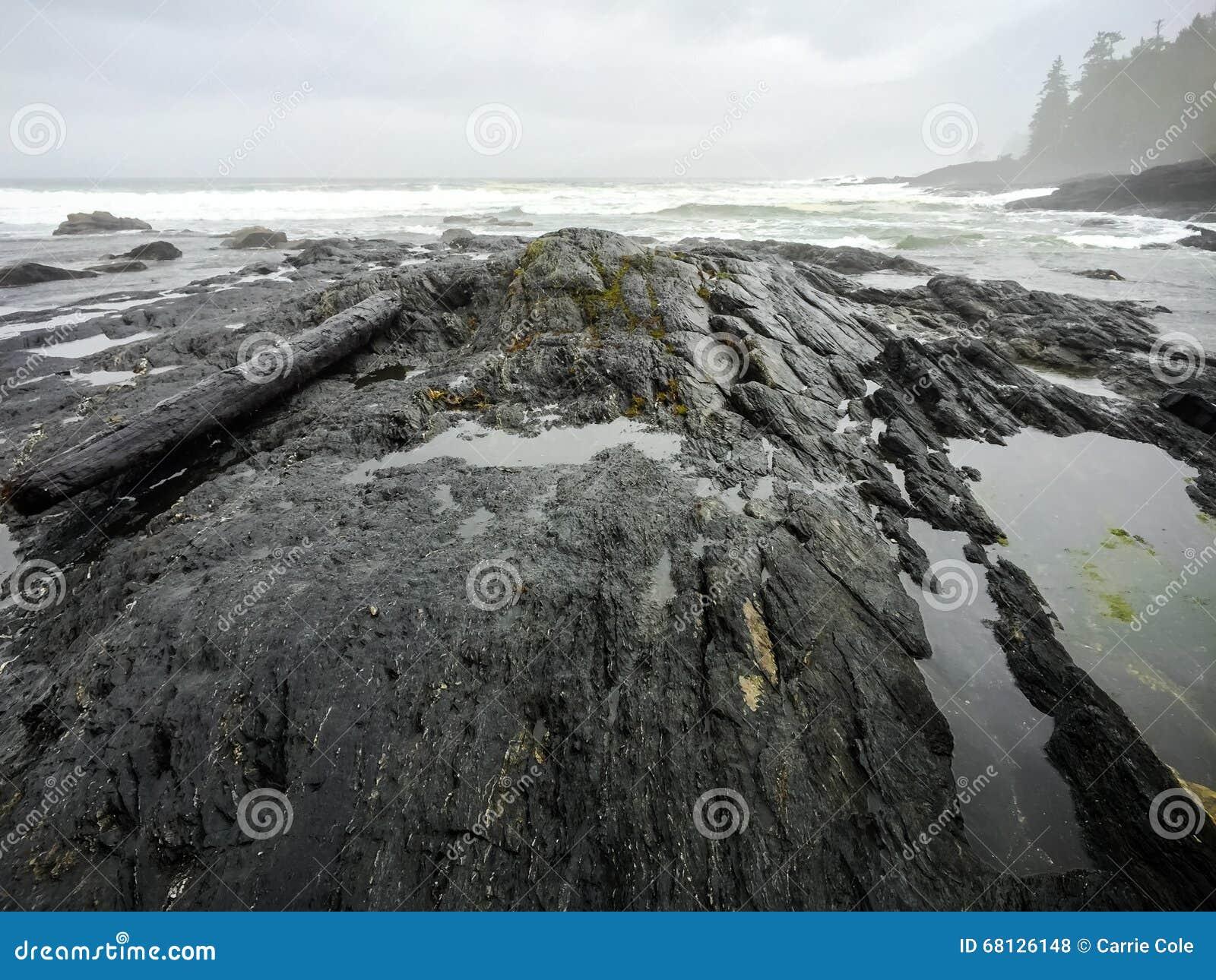 Botanisch Strand, Juan de Fuca Trail, Haven Renfrew, BC, Vancouver