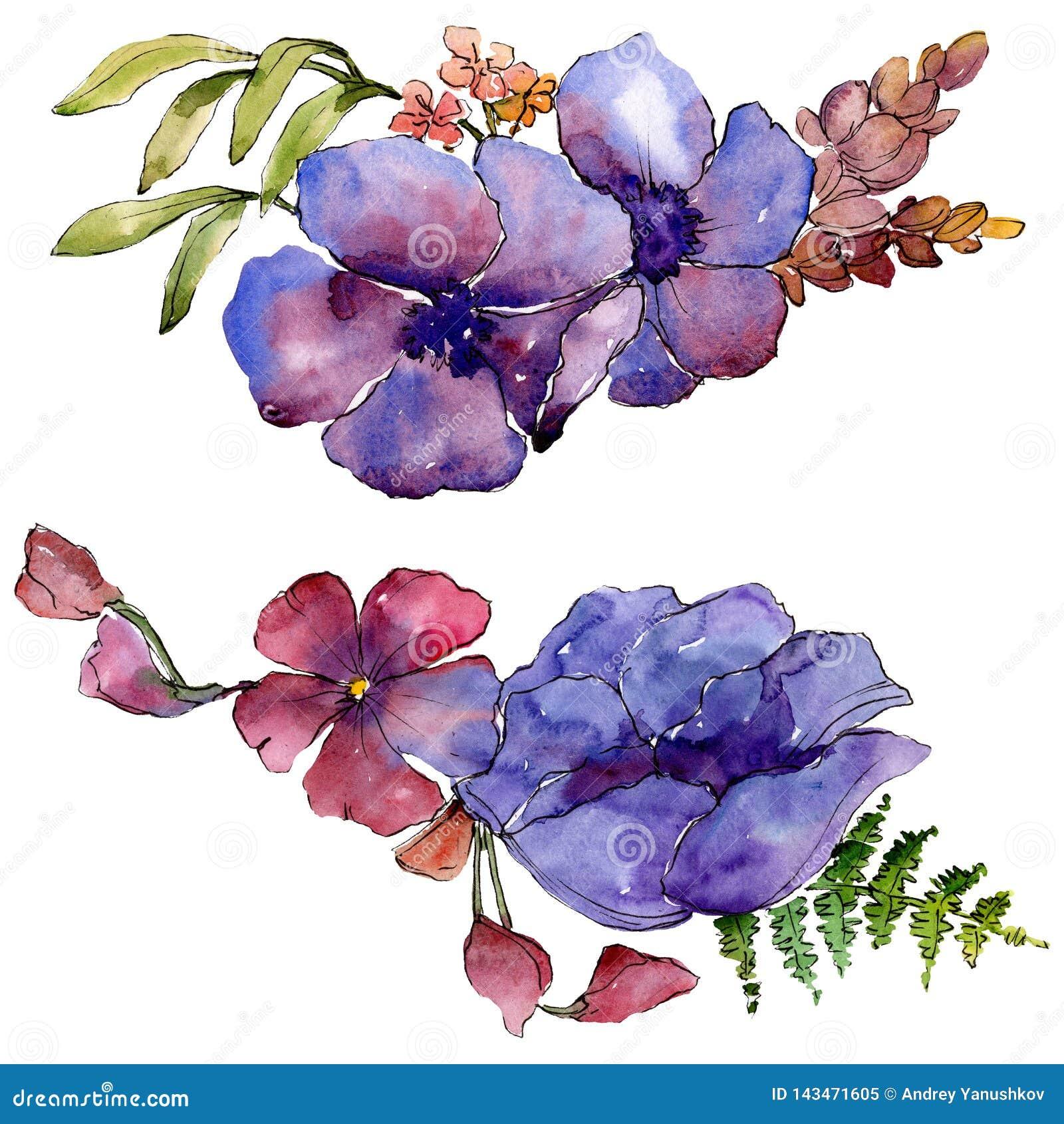 Botanische mit Blumenblumen des blauen purpurroten Blumenstraußes Unterseite für Auslegung Lokalisiertes Blumenstraußillustration