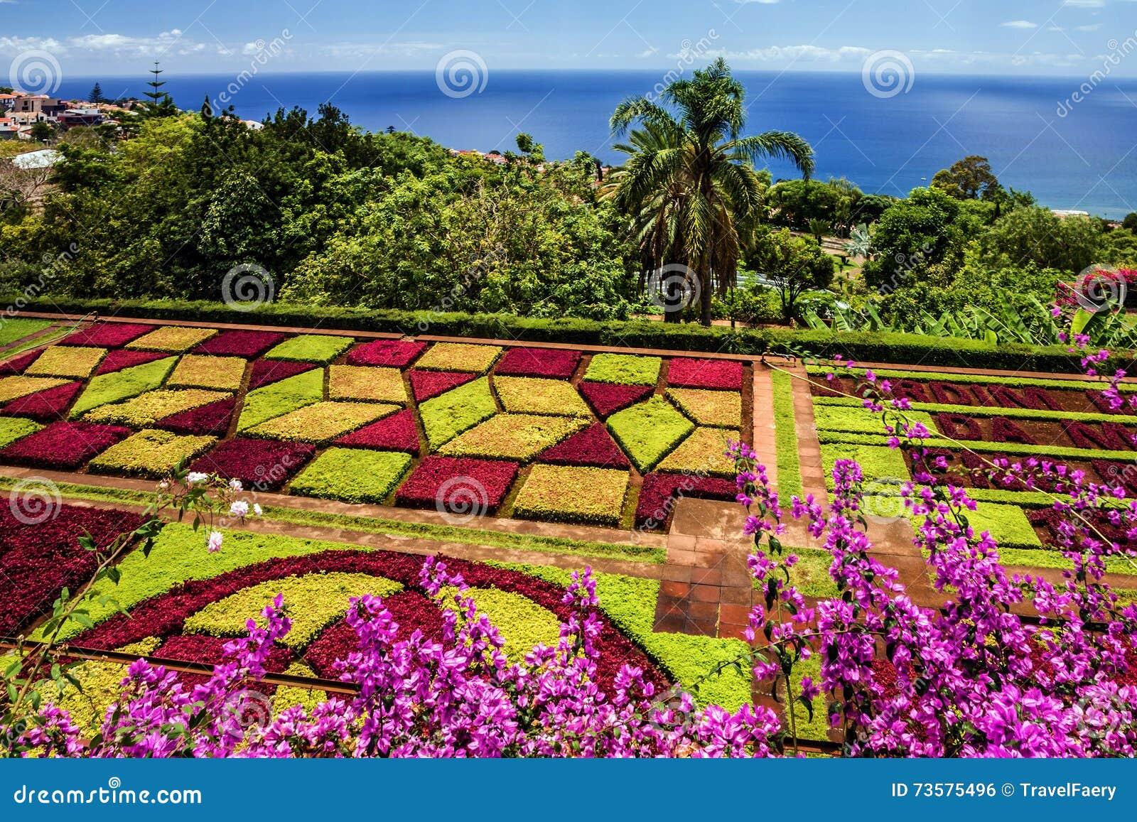 Botanischer Garten Monte Funchal Madeira Portugal Stockfoto
