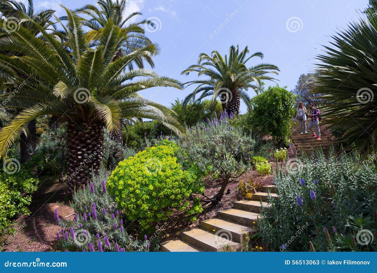 Botanischer Garten Barcelona Spanien Archivbilder Abgabe Des