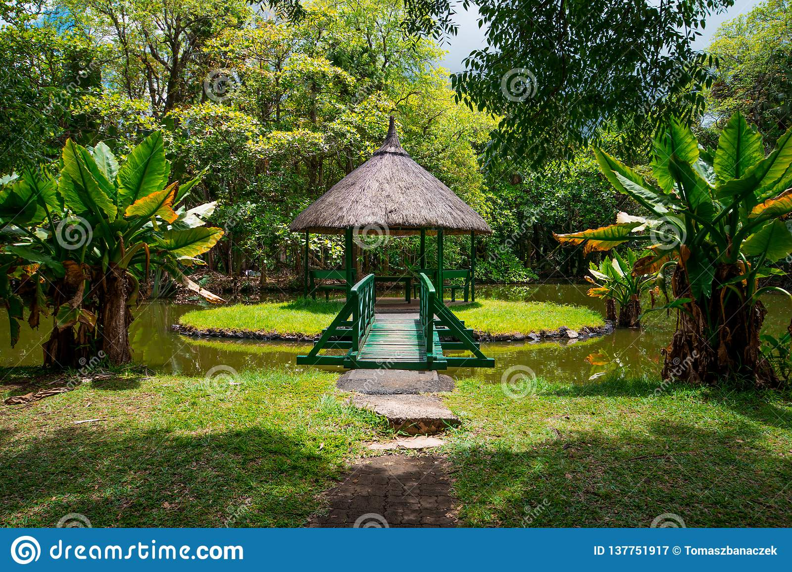 Botanisk trädgård Pamplemousses, Mauritius