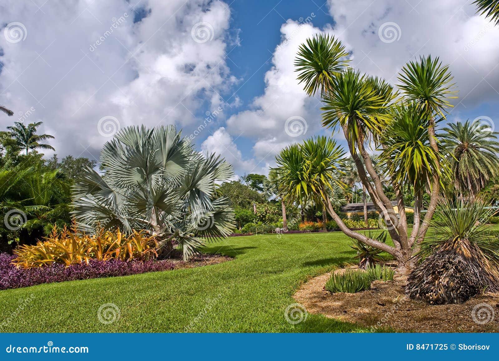 Botaniskt fairchild trädgårds- tropiskt