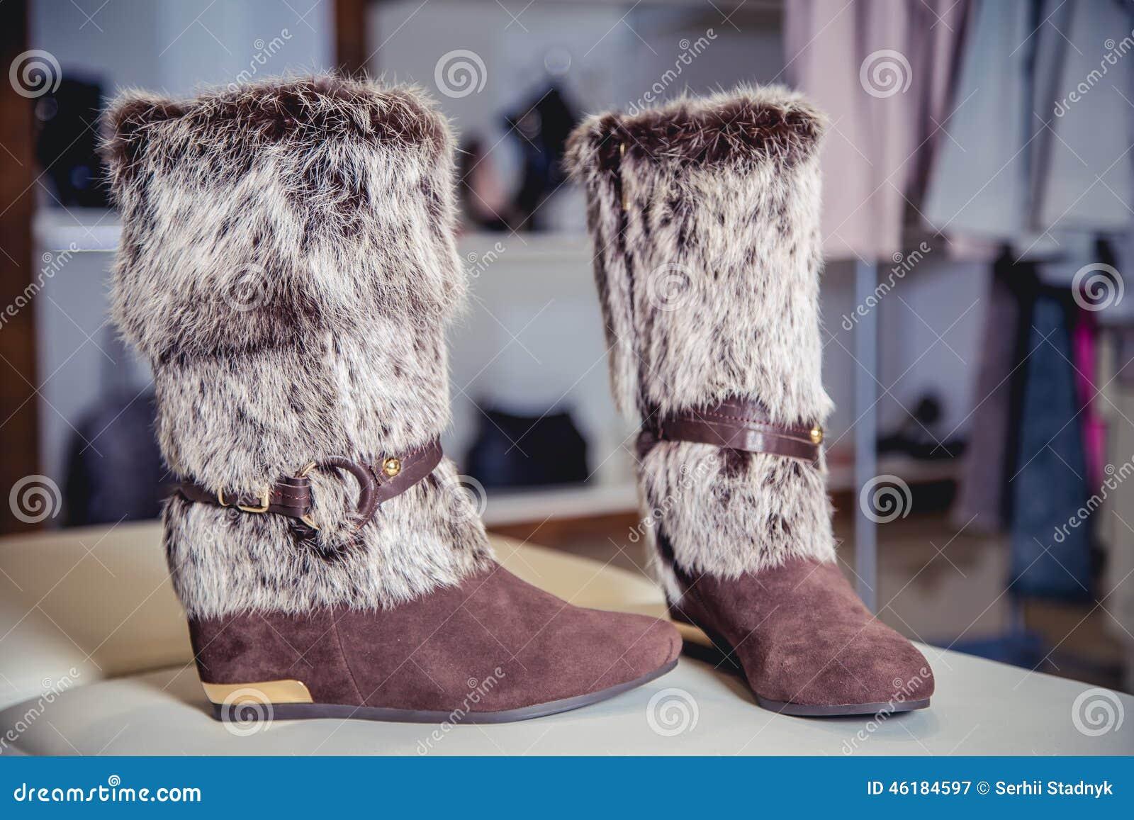 8c353859 Botas Para Mujer Del Otoño, Zapatos Italianos Elegantes Imagen de ...