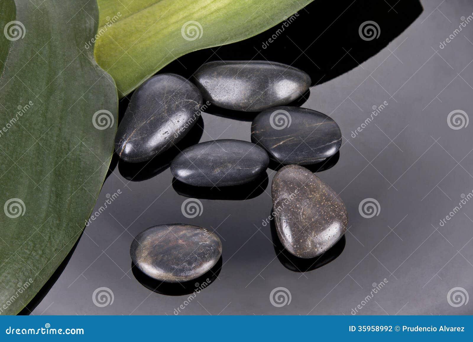 Botella de balneario del aceite del masaje
