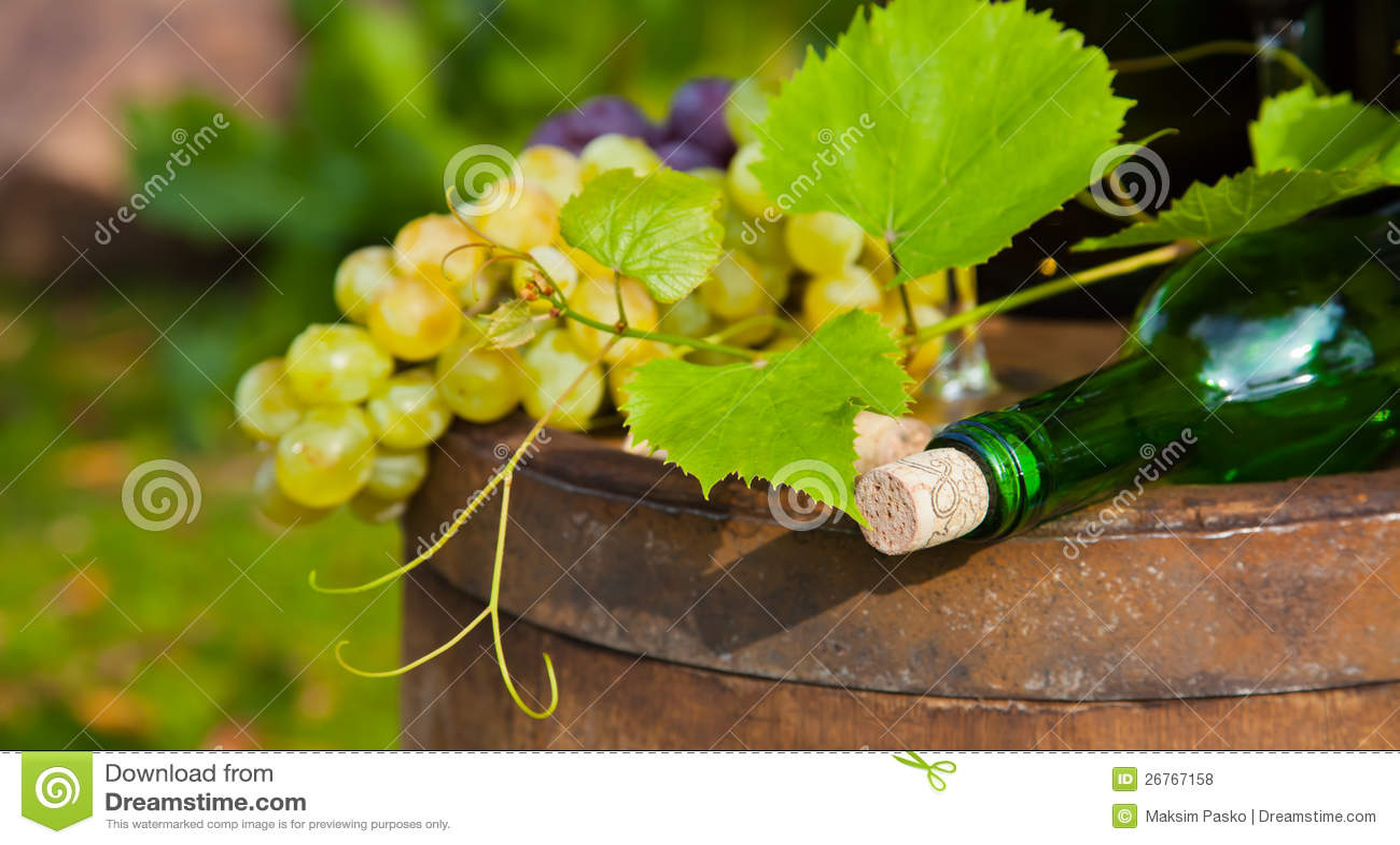 Botella de vino y de uvas