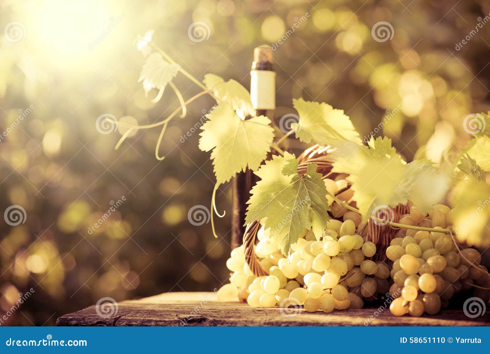 Botella de vino y uvas de la vid